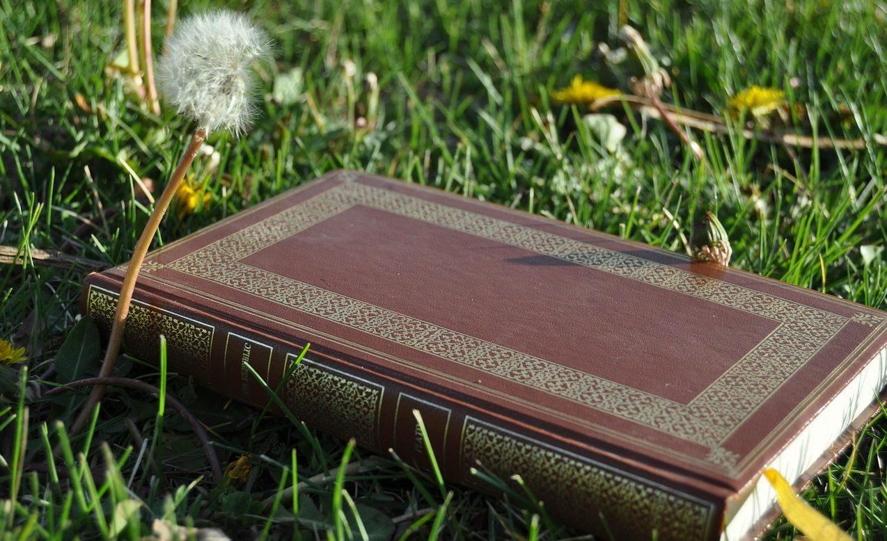 Etický kodex kempaře